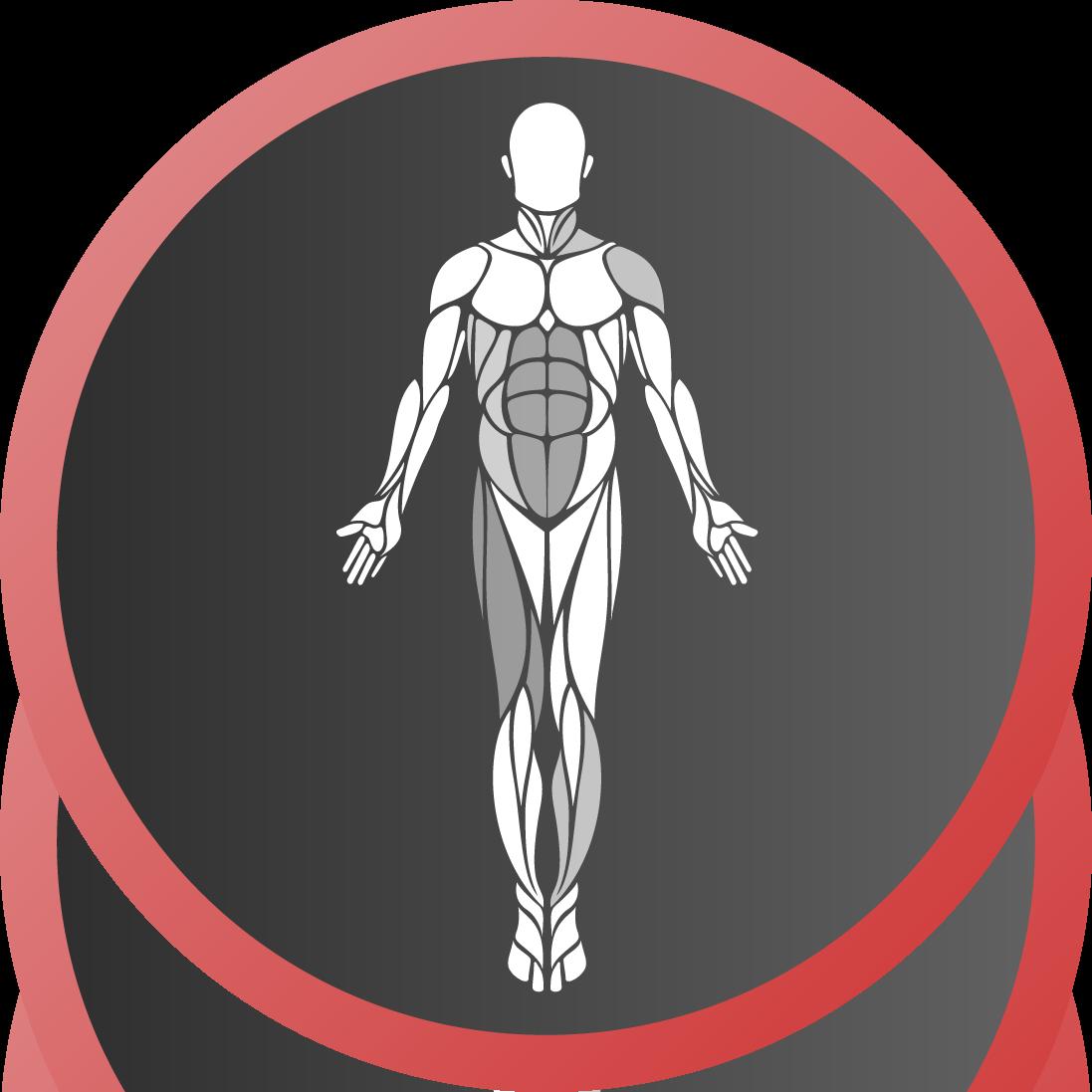 MuscleHeat