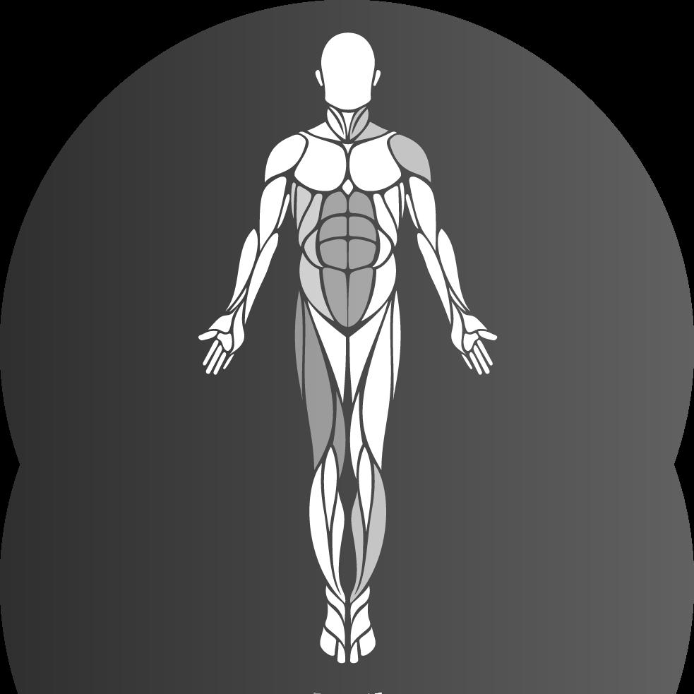 MuscleHeat 2